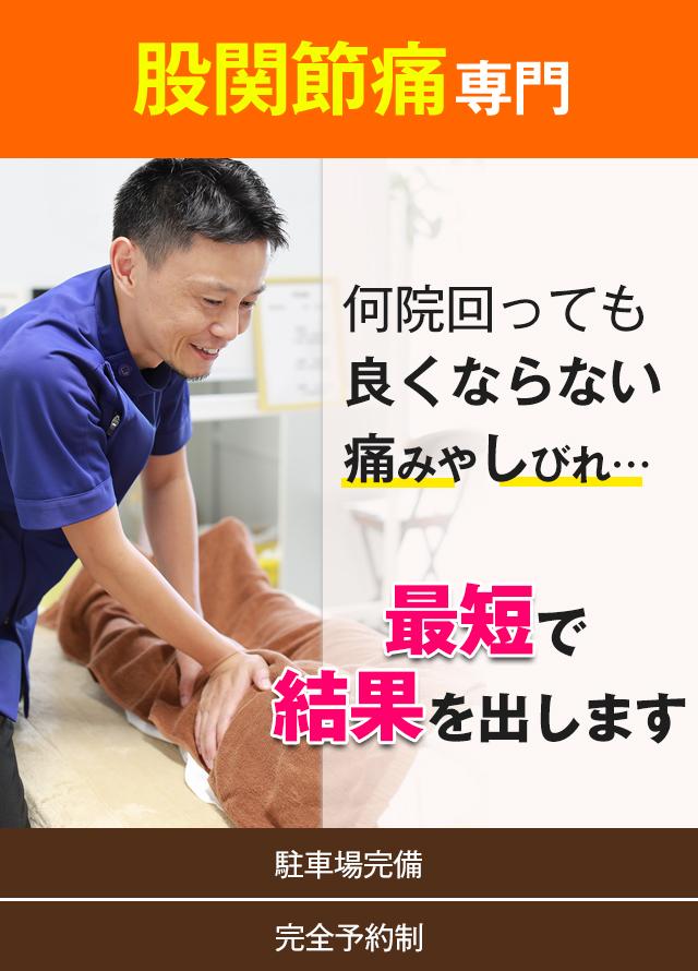 股関節・変形性股関節症